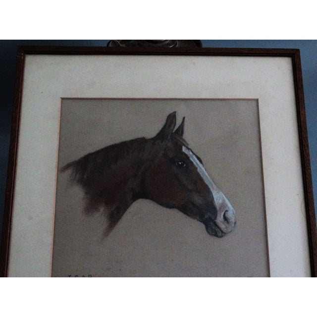Equestrian Race Horse Portrait Drawing - Image 3 of 8