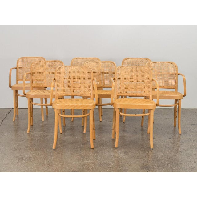 Joseph Hoffman Bentwood Chairs - Set of 8 For Sale - Image 11 of 11