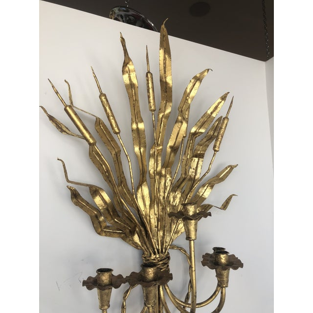 Gold Gilt Iron Candelabra With Cat Tail Motif For Sale In West Palm - Image 6 of 13