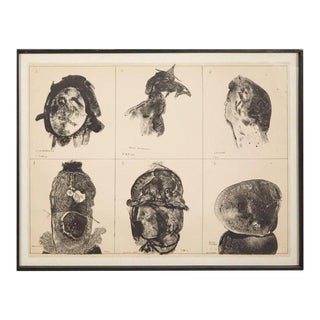 Framed Lithograph by Jose Luis Cuevas Small Edition For Sale