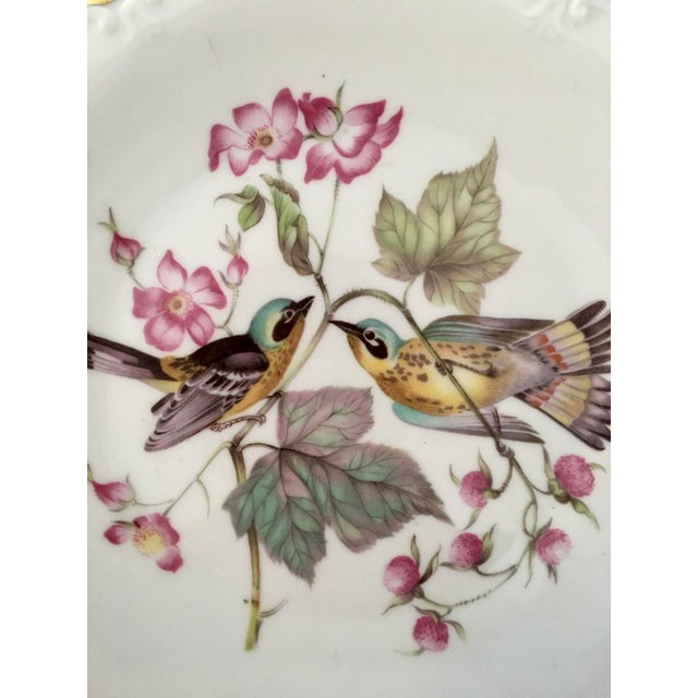 German Floral Bird Plates - a Pair For Sale - Image 5 of 8