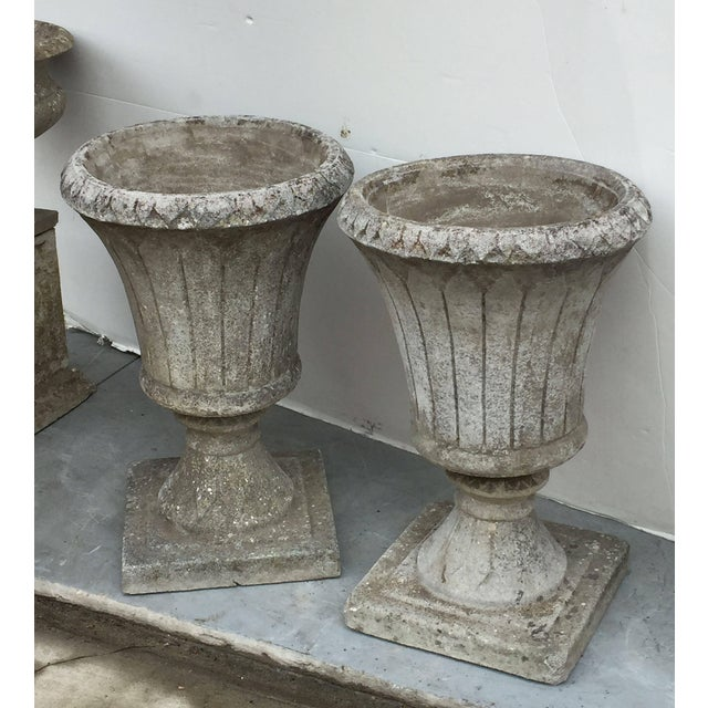 English Garden Stone Urns - a Pair For Sale - Image 4 of 11