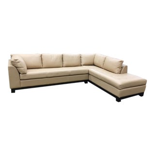 Transitional Modern Cozy Tufted Sectional