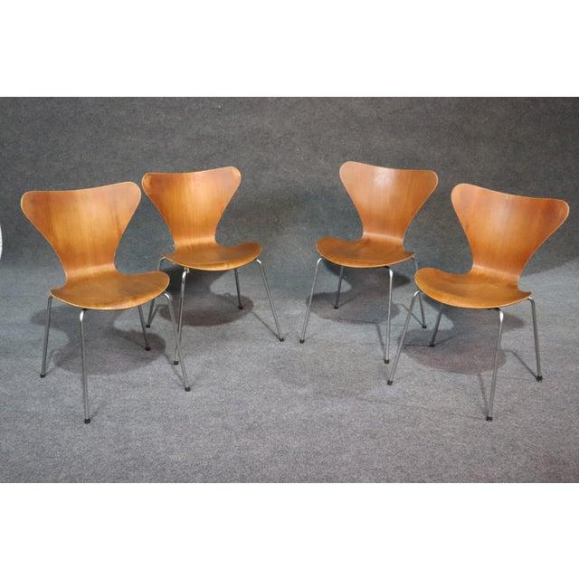 Brown Arne Jacobsen for Fritz Hansen Danish Bentwood Chairs - Set of 4 For Sale - Image 8 of 8