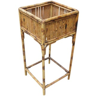 Restored Tiger Bamboo Planter Pedestal