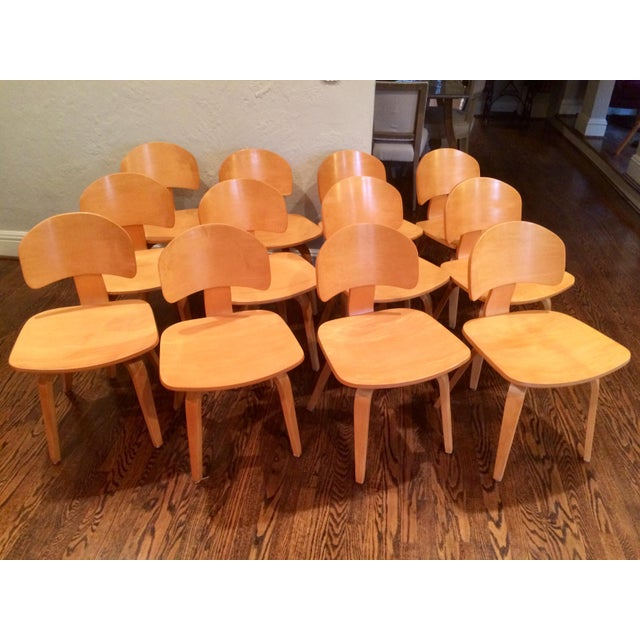 Brown Vintage Thonet Mid Century Style Plywood Chairs- Set of 12 For Sale - Image 8 of 8