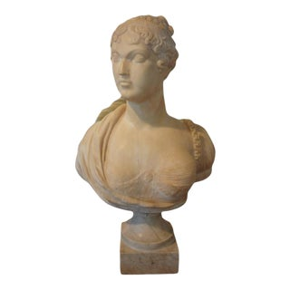 19th Century Italian Classical Alabaster Bust For Sale
