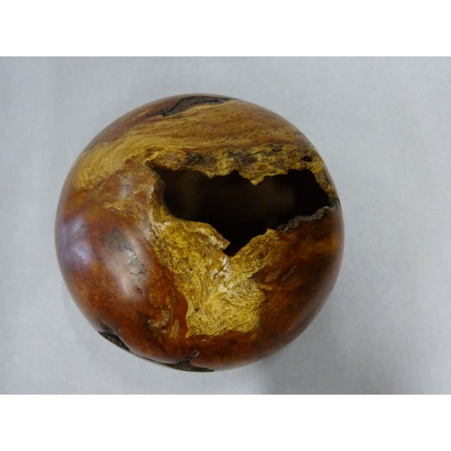 Brown Late 20th Century Cherry Wood Burl Hollow Form Bowl / Vase | Ron Pessolano For Sale - Image 8 of 13