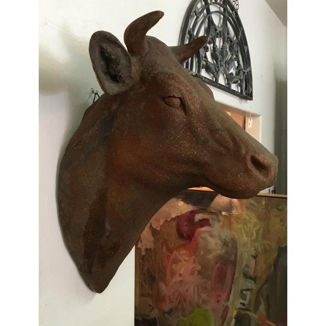 1970s Folk Art Terra Cotta Cow Head For Sale - Image 4 of 12
