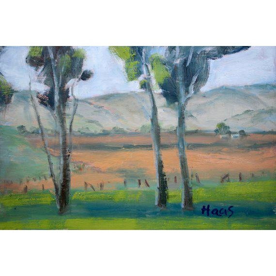 Contemporary Rush Ranch Eucalyptus Contemporary Plein Air Painting For Sale - Image 3 of 9
