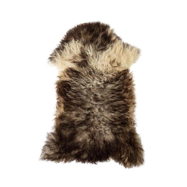 "Contemporary Long Wool Sheepskin Pelt, Handmade Rug - 2'2""x3'6"" For Sale"