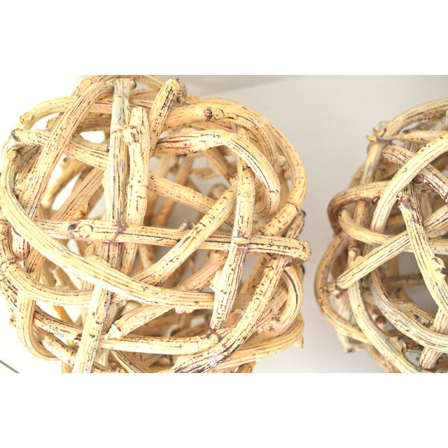 Handcrafted of dried vine creepers (appears to be of wisteria), this pair of Windsor knot ball shaped Topiary make the...