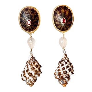 Tortoise Limpet Shell & Ruby Earrings For Sale