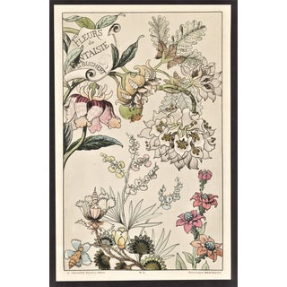 Rare!!! C1880s French Botanical Lithograph-Fantasy Flowers For Sale