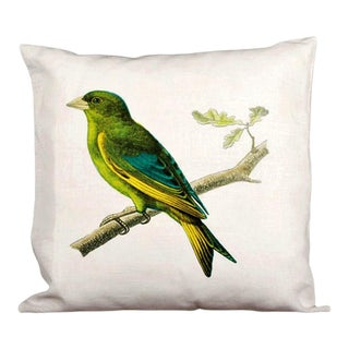 Painted Bunting Cardinal Pillow For Sale
