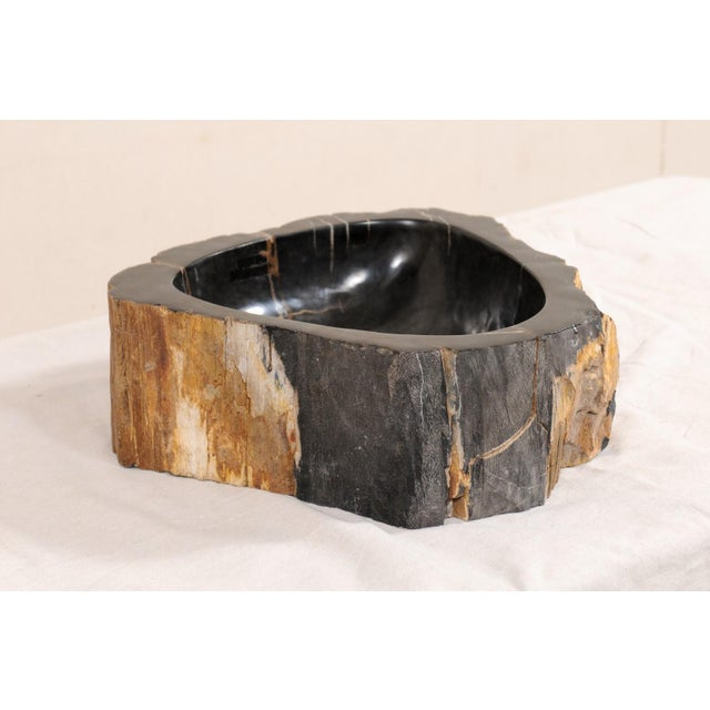 Black Black and Brown Polished Petrified Wood Sink For Sale - Image 8 of 10