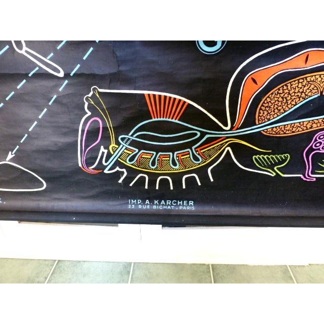 Black French Vintage Chalk Plate Garden Spider For Sale - Image 8 of 8