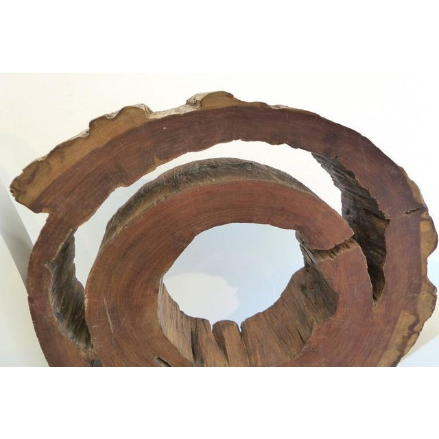 Ipe Reclaimed Wood Mounted Sculpture by Valeria Totti For Sale - Image 4 of 11