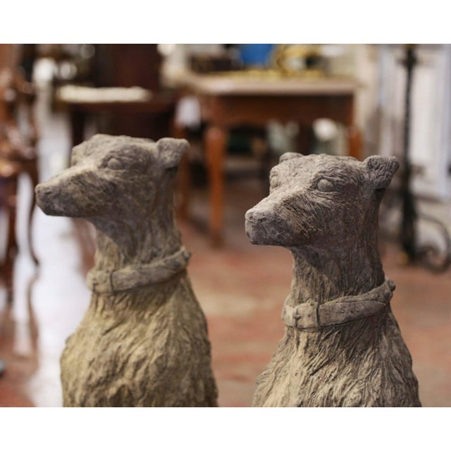 French Vintage French Weathered Carved Stone Statuary Scottish Deer Hounds - a Pair For Sale - Image 3 of 11