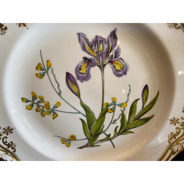 English Spode English Dinner Stafford Flowers Bone Plates - 14 Pieces For Sale - Image 3 of 9