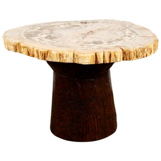 Petrified Wood and Teak Side Table For Sale