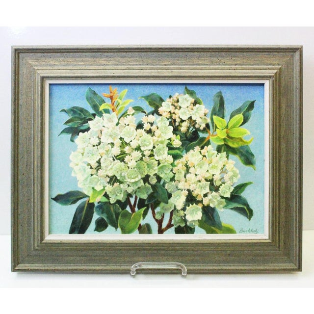 Mountain Laurel and Sky Oil Painting by Buchholz For Sale In New York - Image 6 of 6