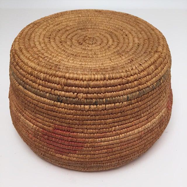 Northwest Coast Salish Lidded Coiled Basket For Sale - Image 10 of 13
