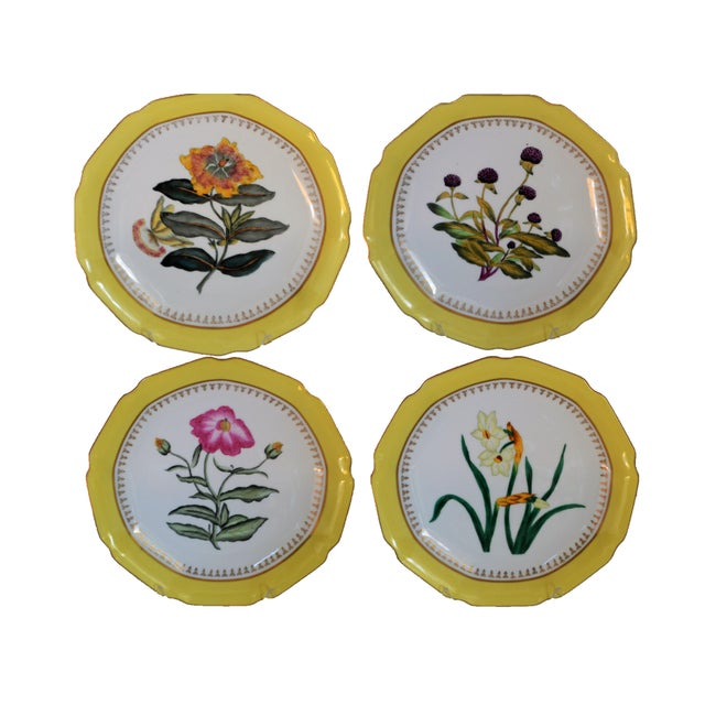 Chelsea House Hand Painted Floral Botanical Yellow Gilt Porcelain Plates - Set of 4 For Sale