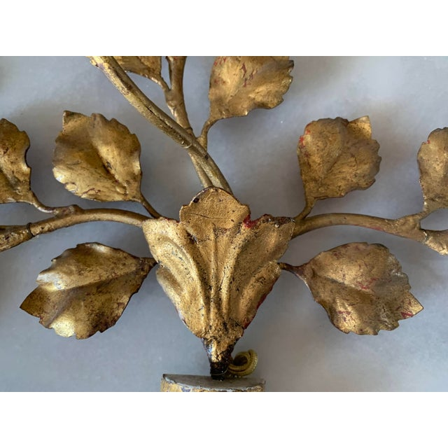 1950s Italian Carved Vasiform & Leafy Branch Wall Sconce For Sale - Image 9 of 13