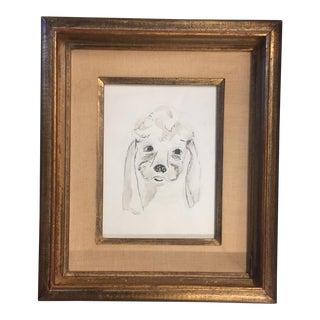 Vintage Original Poodle Dog Pen & Ink Drawing For Sale