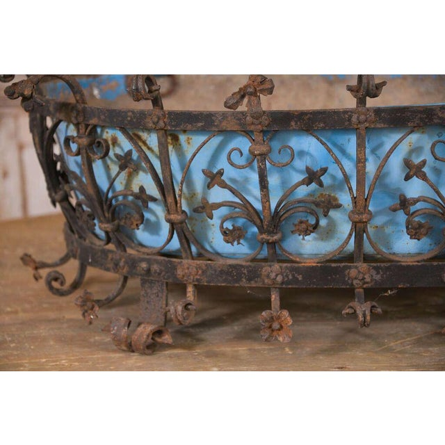 Large robust Italian jardinière forged from wrought iron in the late 18th century. This iron planter contains an early...