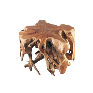 Organic Modern Small Round Teak Root Coffee Table For Sale