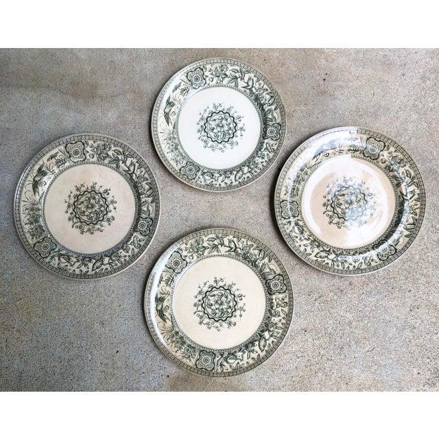 Ceramic Antique English Plates Davenport Iolanthe Transferware - Set of 4 For Sale - Image 7 of 7