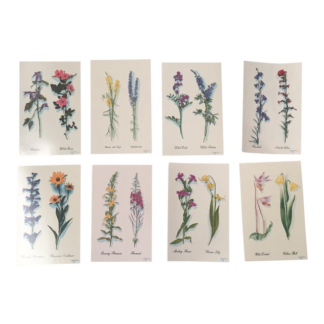 Harrison R. Crandall Wildflower Postcards - Set of 8 For Sale