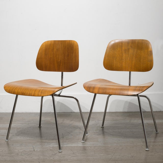 Brown Early Ray and Charles Eames for Herman Miller Dcm Chairs, Circa 1950- Price Is Per Chair For Sale - Image 8 of 13