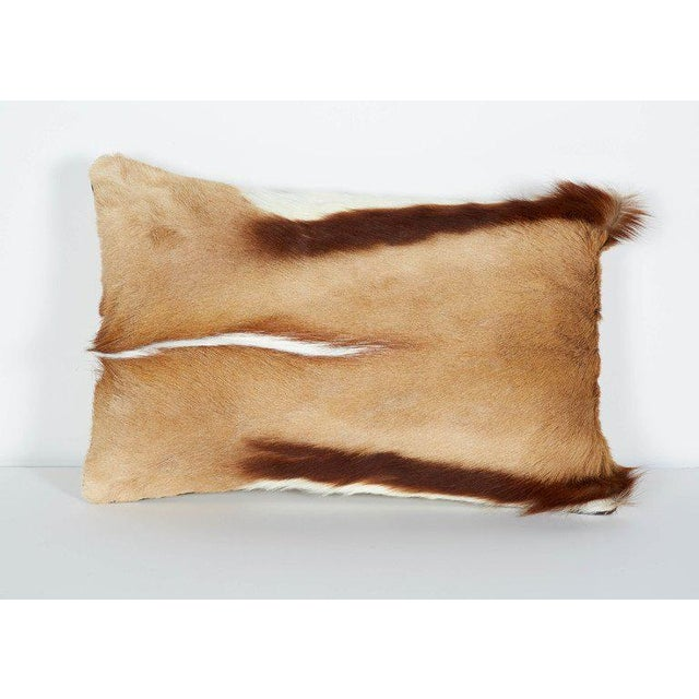 Luxury throw pillow in exotic African Springbok hide in hues of camel, ivory and brown. Lumbar design with suede khaki...