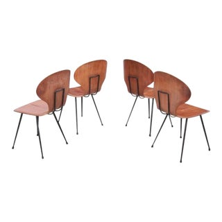 Set of Four Chairs by Carlo Ratti in Plywood for Lissoni