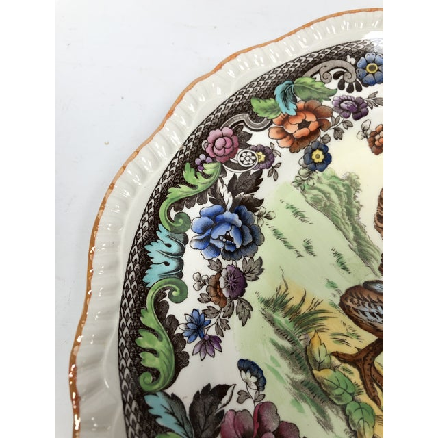 1950s 1950s Vintage Copeland Spode Turkey Plate For Sale - Image 5 of 10