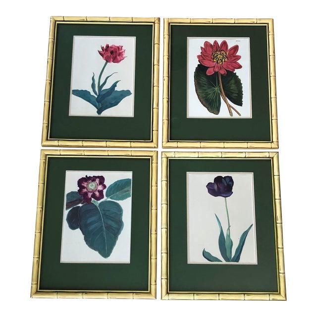 Vintage Botanical Prints - Set of 4 For Sale