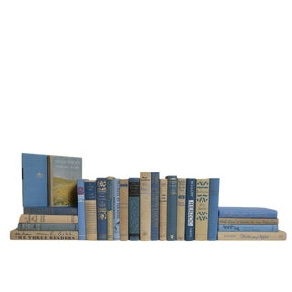 Midcentury Wedgewood Book Set, S/25 For Sale