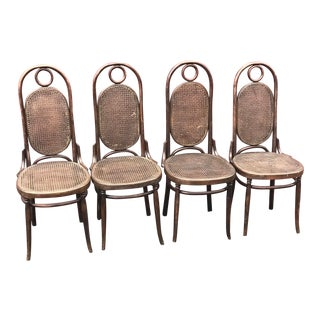 1950s Vintage Thonet Style Bentwood Chairs- Set of 4 For Sale