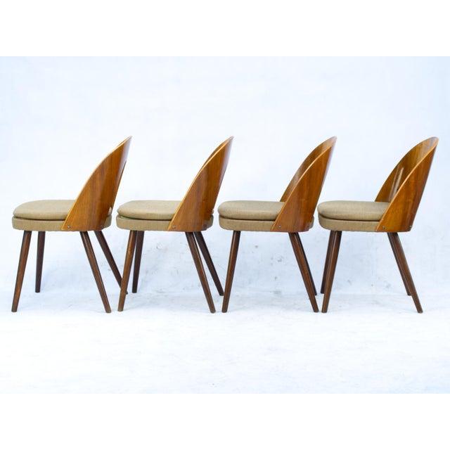 Mid-Century Modern 1960s Antonín Šuman for Tatra Nabytok Np Dining Chairs- Set of 4 For Sale - Image 3 of 6