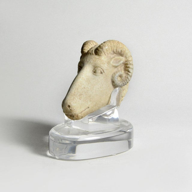 15th Century & Earlier Roman Sculpture of a Ram's Head For Sale - Image 5 of 5