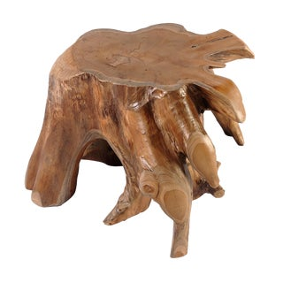 Organic Modern Nature Teak Root Accent or Side Table or Stool 4 For Sale