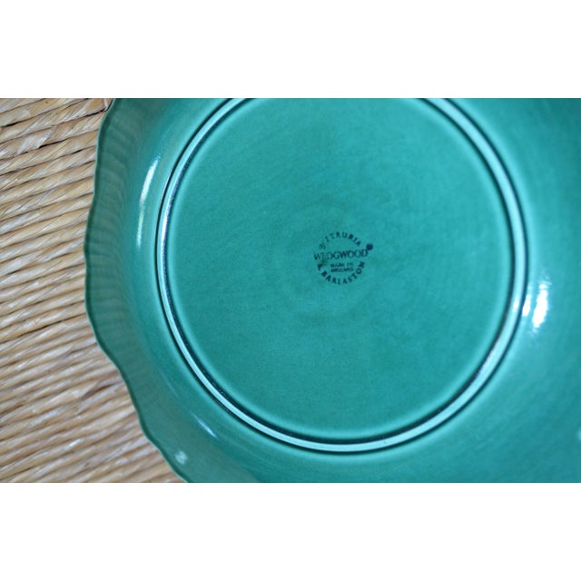 1950s 1950s English Traditional Wedgwood Majolica Plates - Set of 5 For Sale - Image 5 of 9