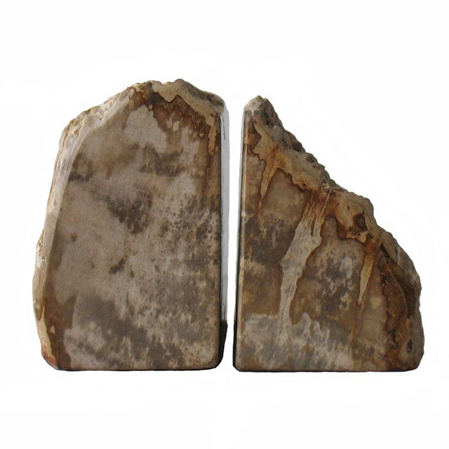 Petrified Wood Bookends - A Pair - Image 1 of 9