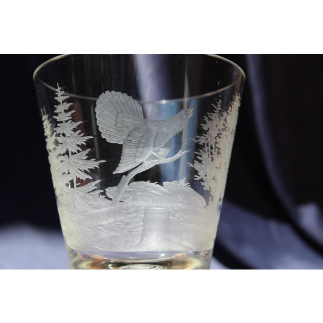 Glass 19th C. Etched Water Goblets- A Pair For Sale - Image 7 of 13