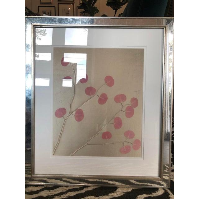 Abstract Organic Nature Pressing on Velvet, Framed For Sale - Image 3 of 6