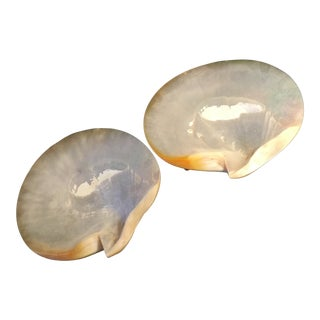 Vintage Mid Century Atlantic Sea Scallop Shell Dish - A Pair For Sale