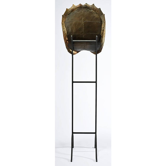 Decorative Faux Turtle Shell on Wrought Iron Stand - Image 6 of 8
